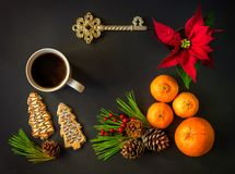 Christmas New year still life flat lay with a Christmas star, tangerines, orange, pine cones, ilex berries, cookies, pine branches. A toy key and a mug of hot royalty free stock photos