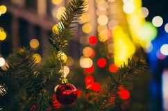 Red Christmas decoration on the pine branch at night bokeh royalty free stock photography
