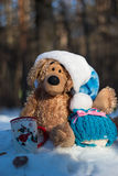 Christmas and new year. Toys teddy bear in the wood Royalty Free Stock Image