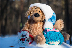 Christmas and new year. Toys teddy bear in the wood royalty free stock photography