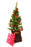 Christmas and New Year tree, stump Stock Photography