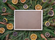 Christmas, New Year winter holiday composition. Empty framed board on green fir-tree branches decorated with dried orange slices a. Empty framed board on green stock photos