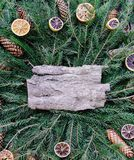 Christmas, New Year winter holiday vintage style composition. Tree bark piece on green fir-tree branches decorated with dried oran. Tree bark piece on green fir stock photo