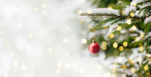 Christmas and New years eve Background. Beautiful Christmas and New years eve Background with Christmas red ball hanging on fir tree branches. Holiday greeting Stock Photo