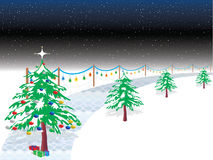 Christmas Night. White Christmas Night with snow and christmas tree Stock Photos