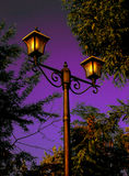 Christmas night. Street lamp with sky and trees in the background Stock Image
