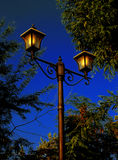 Christmas night. Street lamp with sky and trees in the background Royalty Free Stock Image