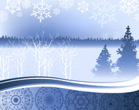 Christmas night - background with winter forest Royalty Free Stock Photography