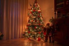 Christmas night interior with warm lights christmas tree Royalty Free Stock Photos