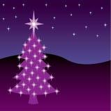 Christmas Night Tree Stock Photos