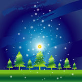 Christmas night,vector. Christmas night in the  pine forest,vector illustration Royalty Free Stock Photos
