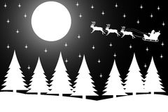 Christmas night in the winter forest. Royalty Free Stock Image