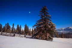 Christmas night. Winter night landscape with bright stars. Snowy hills under starry blue sky royalty free stock photography