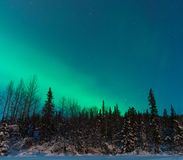 Christmas Northern Lights Stock Image