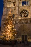 Christmas at Notre-Dame. A Christmas tree in front of Notre-Dame cathedral - Paris, France Royalty Free Stock Images