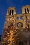 Christmas at Notre-Dame. A Christmas tree in front of Notre-Dame cathedral - Paris, France Stock Photography
