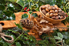 Christmas nuts Royalty Free Stock Image