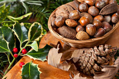 Christmas nuts Stock Image