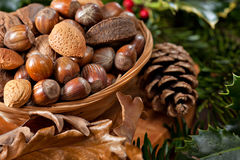 Christmas nuts Royalty Free Stock Images