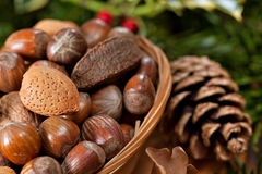 Christmas nuts Stock Photography
