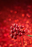 Christmas ornament. Against bokeh red lights background Royalty Free Stock Photos