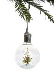 Christmas ornament. Closeup of a clear christmas ornament with a decorated tree inside, hanging from a tree branch isolated against a white background Royalty Free Stock Image