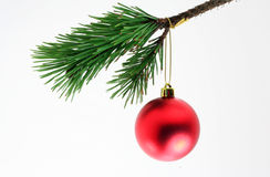 Christmas Ornament. A matte red christamas ball against a white background stock photo
