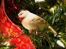 Christmas ornament. White dove Christmas ornament and red ribbon Royalty Free Stock Photography