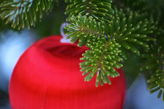 Christmas ornament. Red ornament on a christmas tree stock images
