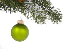 Christmas Ornament. Christmas tree ornament hangs from a pine tree branch on a white background stock photos