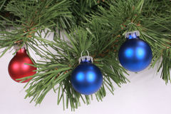Christmas ornament 4. Two blue and one red christmas ornaments on fir tree stock photography