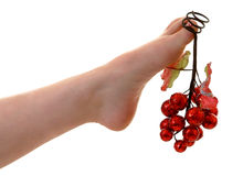 Christmas Ornament. Female's foot with christmas ornament Royalty Free Stock Image