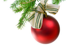 Christmas ornament. With christmas tree royalty free stock photo