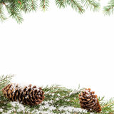 Christmas ornament background with fir branches Royalty Free Stock Images