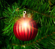 Christmas ornament ball Royalty Free Stock Image
