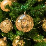 Christmas ornament ball for Xmas New Year festival decorate on pine tree background Stock Image