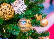Christmas ornament ball for Xmas New Year festival decorate on pine tree background Stock Images