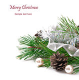 Christmas ornament with cones. On white background royalty free stock photography