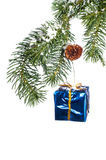 Christmas ornament hanging from branch Stock Photography