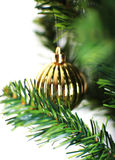 Christmas ornament hanging from a xmas tree branch Royalty Free Stock Photo