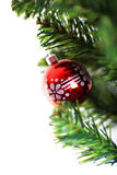 Christmas ornament hanging from a xmas tree branch Royalty Free Stock Photos