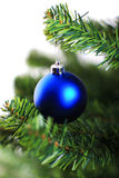 Christmas ornament hanging from a xmas tree branch Stock Image