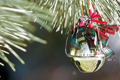 Christmas Ornament on Pine Tree. A gold Christmas bell ornament hanging outside on a real pine tree (shallow focus stock photo