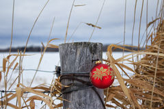 Christmas ornament on a post. A red Christmas ornament hanging from a fence post with snow in the background Royalty Free Stock Photography