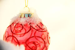 Christmas Ornament. Red Christmas ornament on pine tree stock photo