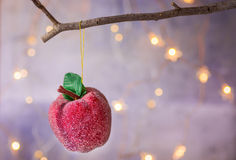 Christmas ornament red sugar coated candy apple hanging on dry tree branch. Shining garland golden lights. Beautiful background Stock Photography