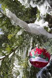 Christmas ornament on the snow covered pine tree. Stock Images