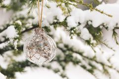 Christmas ornament on snowy pine tree branch Royalty Free Stock Image