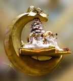Christmas Ornament, Still Life Photography Royalty Free Stock Photography