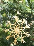 Christmas ornament straw star Stock Images